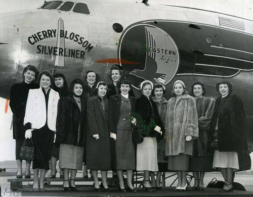 Barbara Joan Freeman, in white coat second from left, was the Illinois State Society Cherry Blossom Princess for 1950 to represent Illinois in the National Cherry Blossom Festival, a signature spring event in DC since about 1928. She is joined by cherry blossom princesses representing 12 other states. By tradition from 1948 to 2012, the U.S. Cherry Blossom Queen is selected by a random spin of a wheel of fortune with all the state names on it. The Queen is invited to visit Japan by the Japan Cherry Blossom Association.